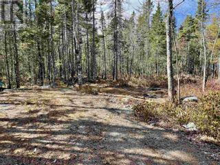 Photo 2: Lot 3 Highway 8 in Harmony: Vacant Land for sale : MLS®# 202108277