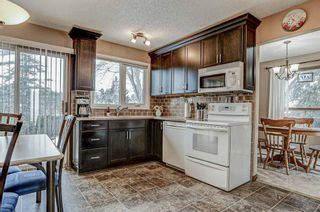 Photo 17: 87 Bermuda Close NW in Calgary: Beddington Heights Detached for sale : MLS®# A1073222