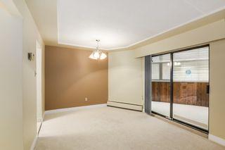 Photo 7:  in Villa Marine: Marpole Home for sale ()  : MLS®# V1095316