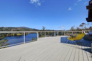 Photo 46: 236 Stevens Rd in : SW Prospect Lake House for sale (Saanich West)  : MLS®# 871772