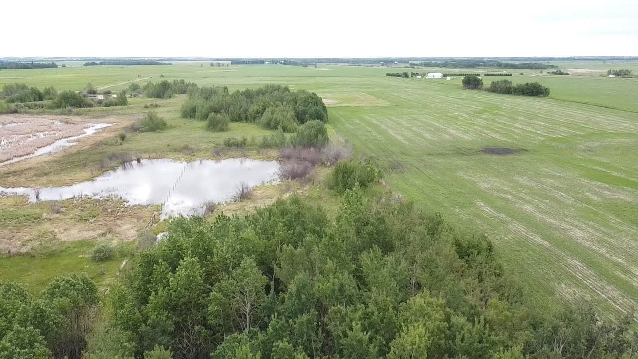 Main Photo: Rge Rd 230 Twp rd 464: Rural Wetaskiwin County Rural Land/Vacant Lot for sale : MLS®# E4249177