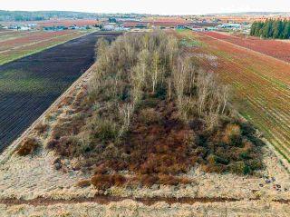 Photo 9: 3762 - 3792 176 Street in Surrey: Serpentine Land for sale (Cloverdale)  : MLS®# R2532600