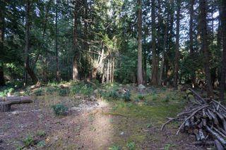 Photo 3: 551 CLUB Crescent: Mayne Island Land for sale (Islands-Van. & Gulf)  : MLS®# R2493632