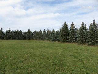 Photo 11: 0 Centreline Road: RM Springfield Vacant Land for sale (R04)  : MLS®# 202103923