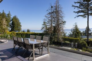 Photo 41: 4044 Hollydene Pl in : SE Arbutus House for sale (Saanich East)  : MLS®# 873482