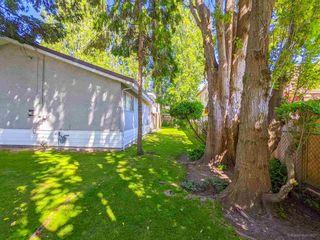 Photo 12: 3820 EARLMOND Avenue in Richmond: Seafair House for sale : MLS®# R2582825