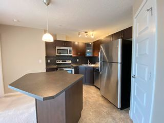 Photo 13: 202 400 SILVER_BERRY Road in Edmonton: Zone 30 Condo for sale : MLS®# E4259949