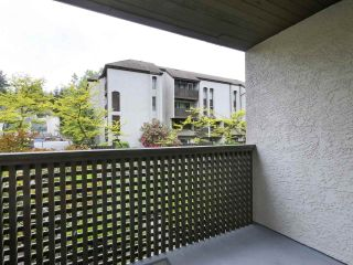 """Photo 21: 15 365 GINGER Drive in New Westminster: Fraserview NW Townhouse for sale in """"Fraser Mews"""" : MLS®# R2458131"""