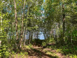 Photo 5: RR 132 TWP 600: Rural Smoky Lake County Land Commercial for sale : MLS®# E4250832