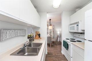 Photo 30: 214 17109 67 Avenue in Edmonton: Zone 20 Condo for sale : MLS®# E4243417