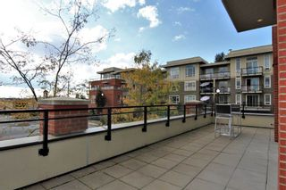 Photo 18: C114 20211 66 AVENUE in Langley: Willoughby Heights Condo for sale : MLS®# R2329502