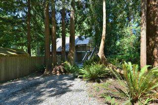 "Photo 30: 2508 LOWER Road: Roberts Creek House for sale in ""Roberts Creek"" (Sunshine Coast)  : MLS®# R2598378"