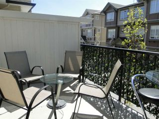 """Photo 17: 48 10151 240 Street in Maple Ridge: Albion Townhouse for sale in """"ALBION STATION"""" : MLS®# R2182569"""