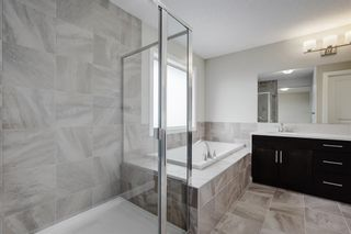 Photo 21: 57 RED SKY Terrace NE in Calgary: Redstone Detached for sale : MLS®# A1060906