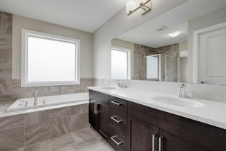 Photo 22: 57 RED SKY Terrace NE in Calgary: Redstone Detached for sale : MLS®# A1060906