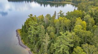 Photo 5: Lot 24 Five Point Island in South of Kenora: Vacant Land for sale : MLS®# TB212088