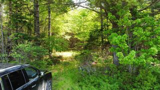 Photo 1: Lot Highway 203 in Shelburne: 407-Shelburne County Vacant Land for sale (South Shore)  : MLS®# 202114248