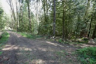 Photo 18: LOT 7 HARRISON River: Harrison Hot Springs House for sale : MLS®# R2562627