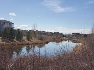 Photo 50: 230 CRANWELL Bay SE in Calgary: Cranston Detached for sale : MLS®# A1087006