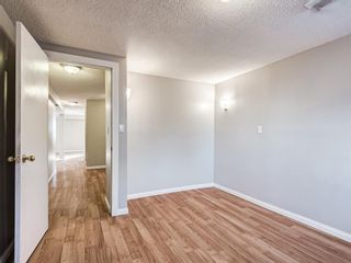 Photo 32: 20 Rivervalley Drive SE in Calgary: Riverbend Detached for sale : MLS®# A1047366