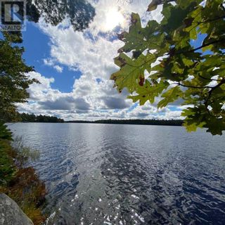 Photo 7: 317 Forest Point Loop in Labelle: Vacant Land for sale : MLS®# 202124977