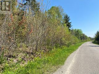 Photo 36: 5264 Rte 770 in Rollingdam: Vacant Land for sale : MLS®# NB058269