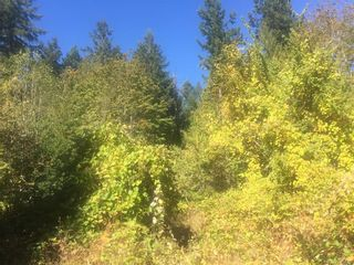 Photo 4: 1835 Radway Rd in UCLUELET: ML Shawnigan Land for sale (Malahat & Area)  : MLS®# 755429