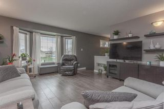 Photo 7: 38 Edelweiss Crescent in Niverville: R07 Residential for sale : MLS®# 202112195