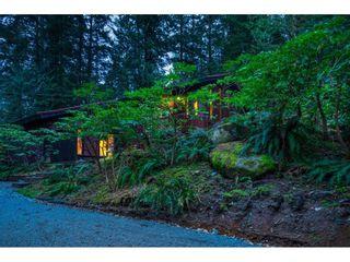 Photo 6: 11658 272 Street in Maple Ridge: Whonnock House for sale : MLS®# R2560673