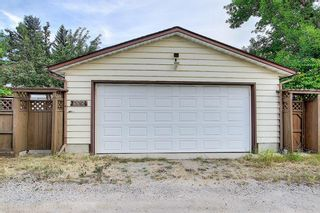 Photo 44: 335 Queensland Place SE in Calgary: Queensland Detached for sale : MLS®# A1137041
