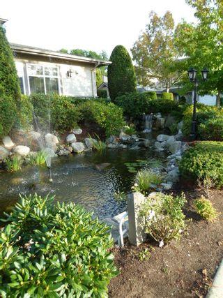 Photo 18: 44 8888 151 Street in Carlingwood: Home for sale : MLS®# F1124202