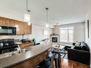 Photo 16: 307 2 HEMLOCK Crescent SW in Calgary: Spruce Cliff Apartment for sale : MLS®# A1076782