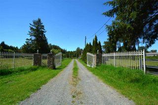 Photo 6: 4569 190 Street in Surrey: Serpentine House for sale (Cloverdale)  : MLS®# R2588506