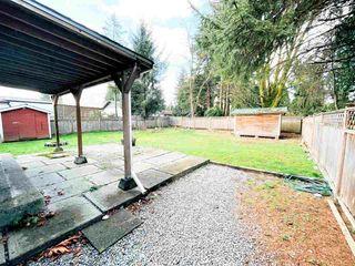 Photo 17: 11613 STEEVES Street in Maple Ridge: Southwest Maple Ridge House for sale : MLS®# R2556127