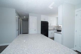 Photo 9: 367 Pinewind Road NE in Calgary: Pineridge Detached for sale : MLS®# A1094790