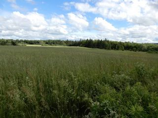 Photo 13: Lot 17 Second Division Road in Heathbell: 108-Rural Pictou County Vacant Land for sale (Northern Region)  : MLS®# 202116209
