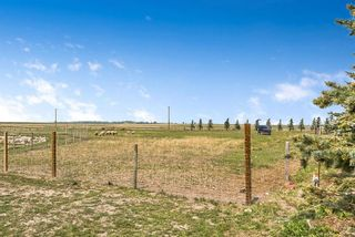 Photo 48: 275079 Township Road 240 in Rural Rocky View County: Rural Rocky View MD Detached for sale : MLS®# A1130907