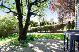Photo 17: 35138 SPENCER Street in Abbotsford: Abbotsford East House for sale : MLS®# R2059774
