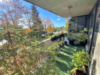 """Photo 28: 204 4105 IMPERIAL Street in Burnaby: Metrotown Condo for sale in """"SOMERSET HOUSE"""" (Burnaby South)  : MLS®# R2511381"""