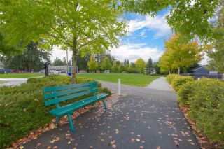 "Photo 20: 308 12096 222 Street in Maple Ridge: West Central Condo for sale in ""CANUCK PLAZA"" : MLS®# R2541037"