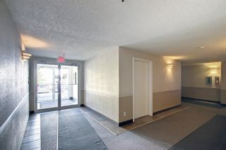 Photo 21: 108 2108 Valleyview Park SE in Calgary: Dover Apartment for sale : MLS®# A1145848