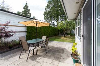 """Photo 17: 213 3665 244 Street in Langley: Aldergrove Langley Manufactured Home for sale in """"Langley Grove Estates"""" : MLS®# R2420727"""