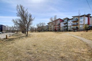 Photo 23: 102 4455A Greenview Drive NE in Calgary: Greenview Apartment for sale : MLS®# A1088042