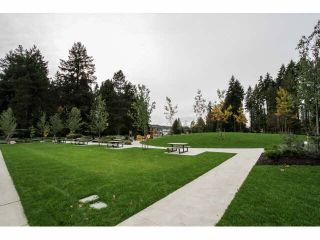 "Photo 17: 206 1167 PIPELINE Road in Coquitlam: New Horizons Condo for sale in ""GLENWOOD PLACE"" : MLS®# V1091998"