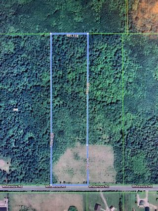 Photo 4: 22084 PT 2 PARCEL, WHITMORE RD in FORT FRANCES: Vacant Land for sale : MLS®# TB212402