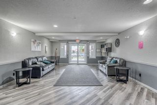 Photo 21: 417 1717 60 Street SE in Calgary: Red Carpet Apartment for sale : MLS®# A1133499