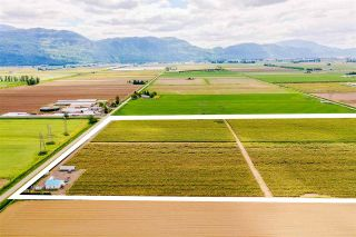 Photo 9: 4081 DIXON Road: Agri-Business for sale in Abbotsford: MLS®# C8038207