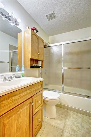 Photo 20: 25 Martinview Crescent NE in Calgary: Martindale Detached for sale : MLS®# A1107227