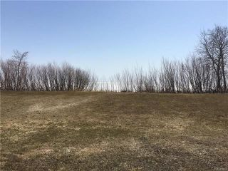 Photo 2: 81 Brayden Drive in Gimli Rm: Silver Harbour Residential for sale (R26)  : MLS®# 1804648