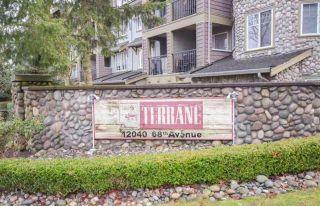 "Photo 1: 49 12040 68 Avenue in Surrey: West Newton Townhouse for sale in ""TERRANE"" : MLS®# R2590895"